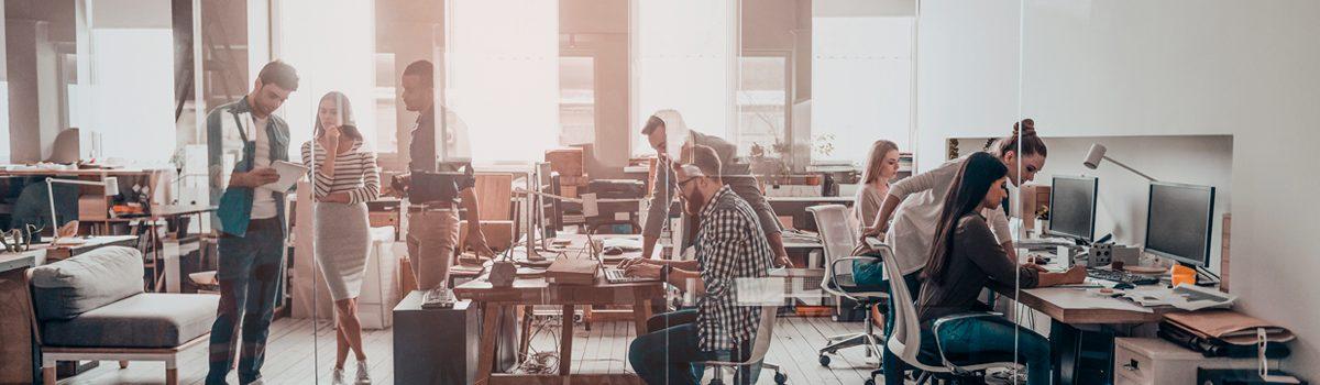 Conheça o sistema de gestão holacracia: empresa sem chefes pode dar certo?